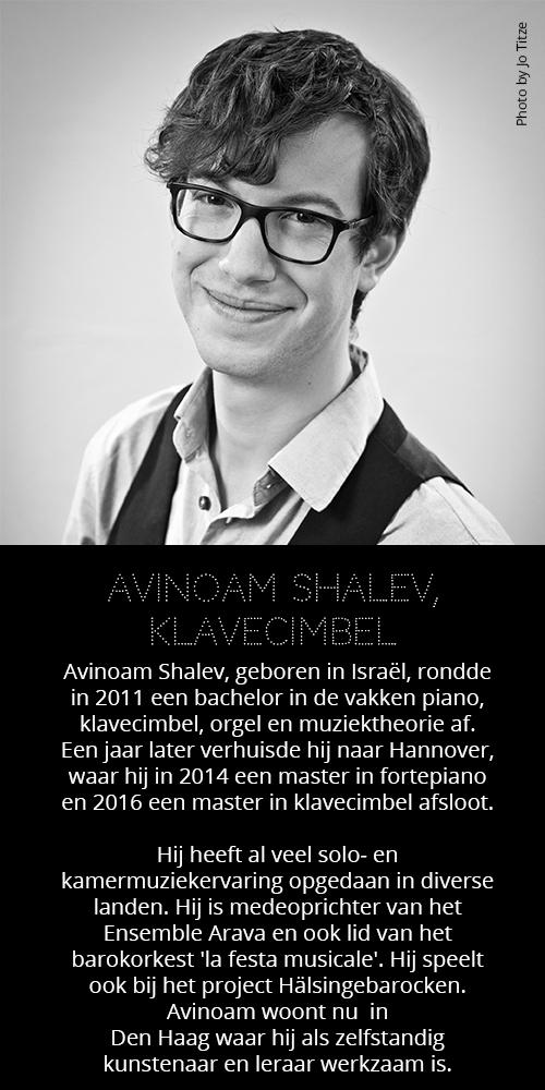 Avinoam Shalev